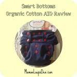 Smart Bottoms 3.1 Organic AIO Diaper Review