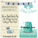 Bear Bums Flash Giveaway: AppleCheeks RipTide Storage Sac #MamanLoupThanksYou