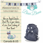 Bear Bums Flash Giveaway: Steel Me! #MamanLoupThanksYou