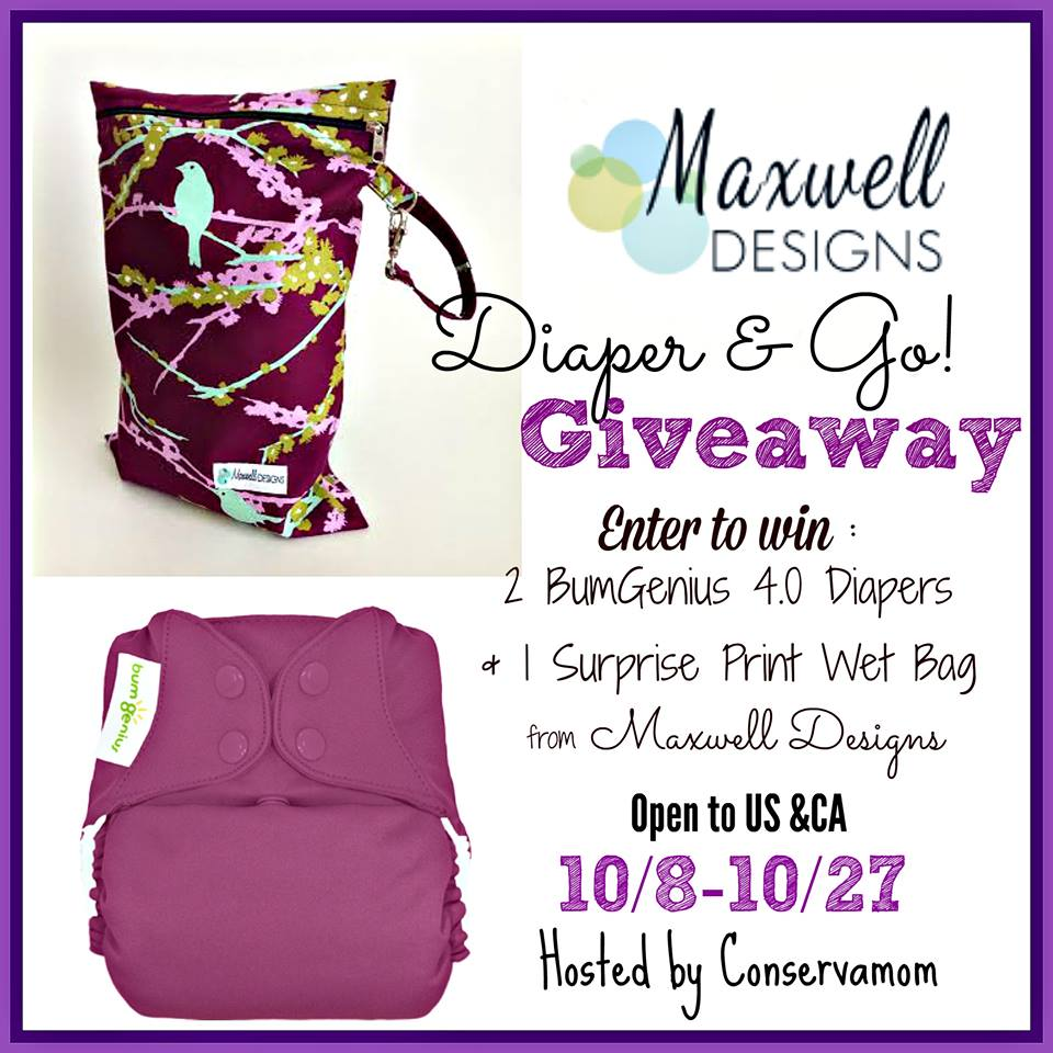 Maxwell Designs Diaper & Go Giveaway!