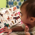 "DK Books ""My First"" Preschool Picture Board Books Review"