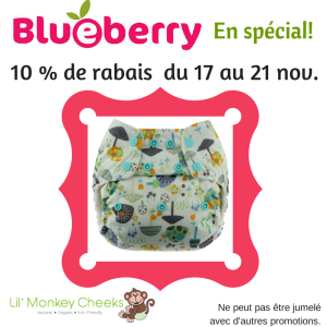 Spécial Blueberry