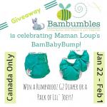 Celebrate Maman Loup's BamBabyBump with Bambumbles!