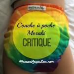 Critique : Couche TE2/à Poche Moraki