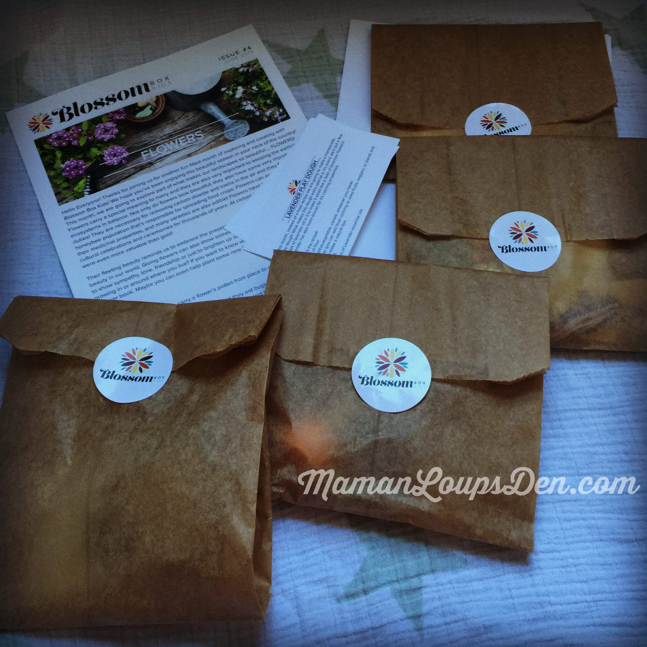 Blossom Box Review by Maman Loup's Den Box Contents