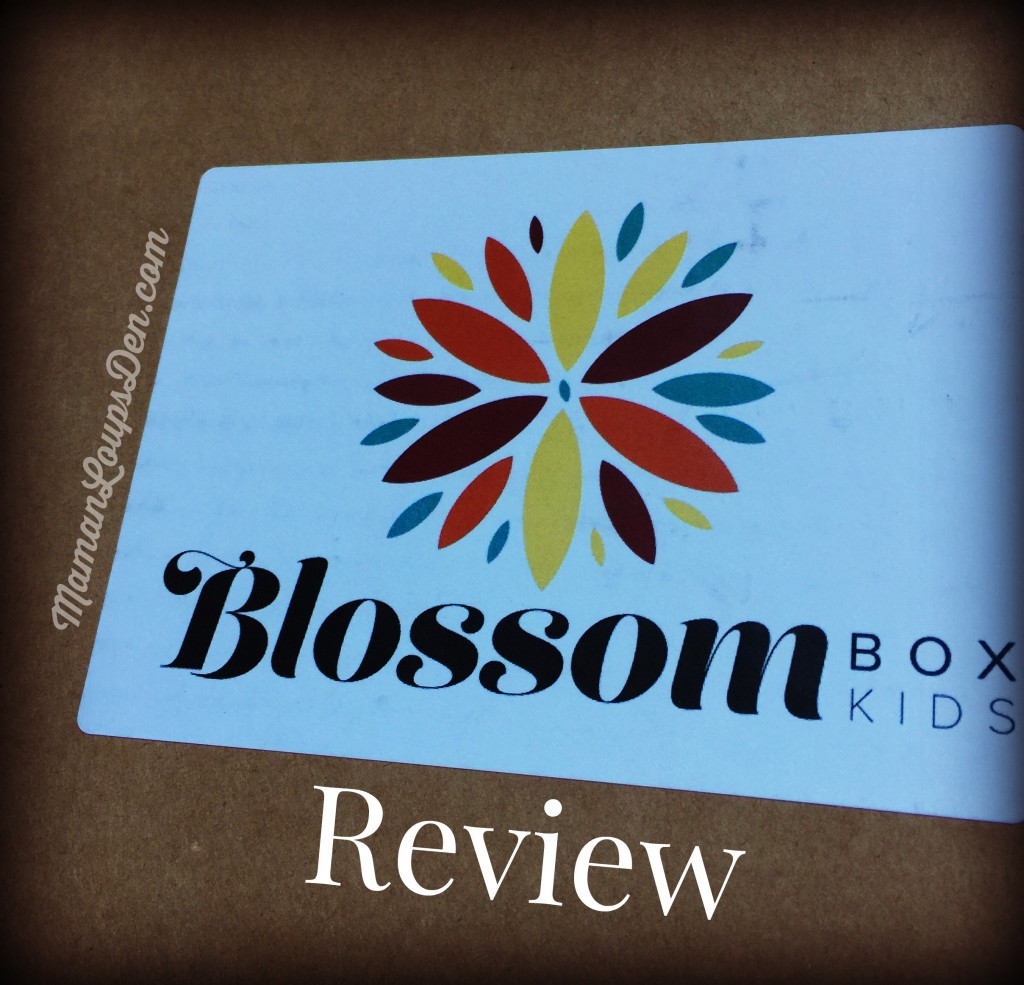 Blossom Box Kids Subscription Craft Box Review