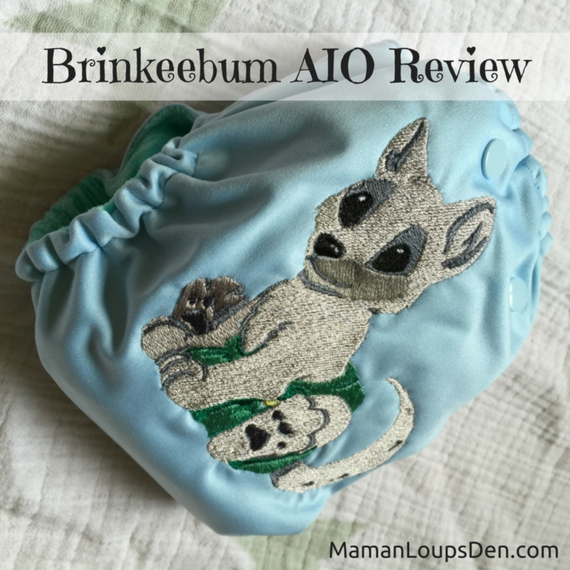 Brinkeebum All-in-One Embroidered Diaper Review