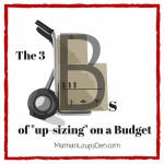 "The Three Bs of ""Up-sizing"" on a Budget"
