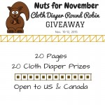 Nuts for November Cloth Diaper Giveaway