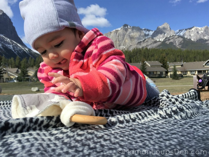 Little Miss Cub in Canmore