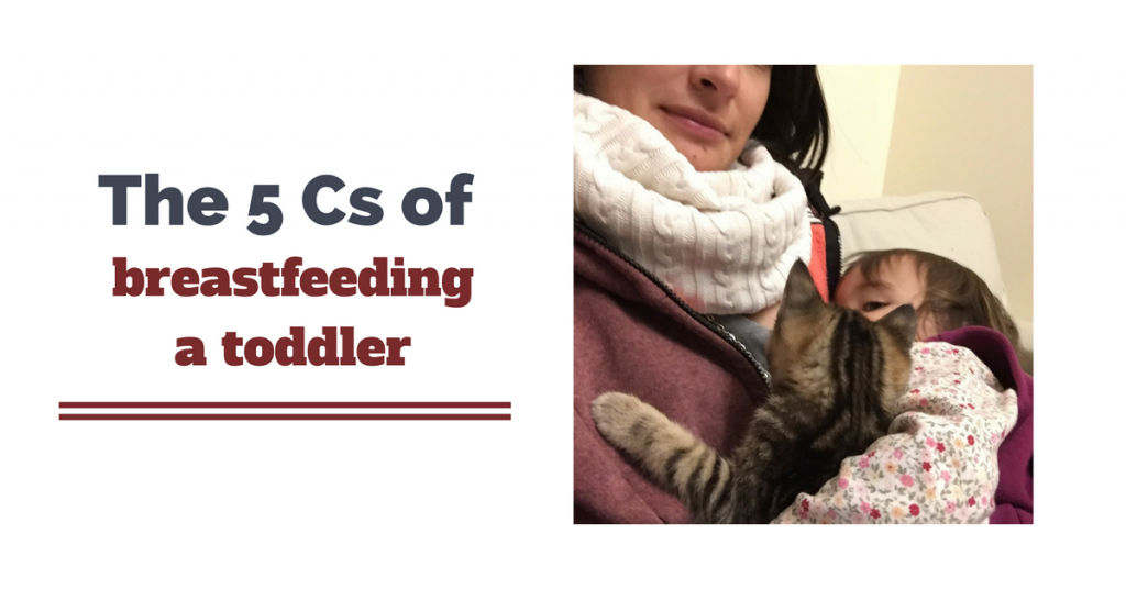 The 5 Cs of Breastfeeding a Toddler {+ Medela Freestyle Giveaway}