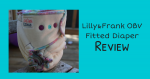 Lilly&Frank OBV Fitted Diaper Review {+ giveaway}