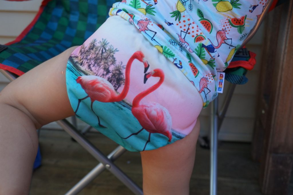 Funky Fluff One-Size Swim Diaper Review