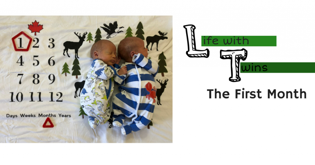 Life With Twins: The First Month