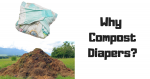 Why Compost Diapers?