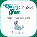 Queen of Green Module 1: Make Less Waste
