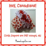 Cloth Diapers are PST Exempt!