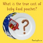 What is the true cost of baby food pouches?
