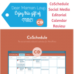 CoSchedule Editorial Calendar Review: Everything I Was Searching For and More!
