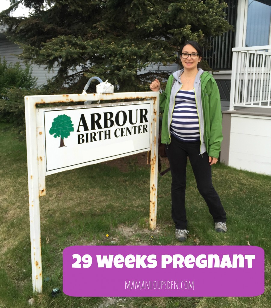 29 weeks pregnant: pregnancy journal