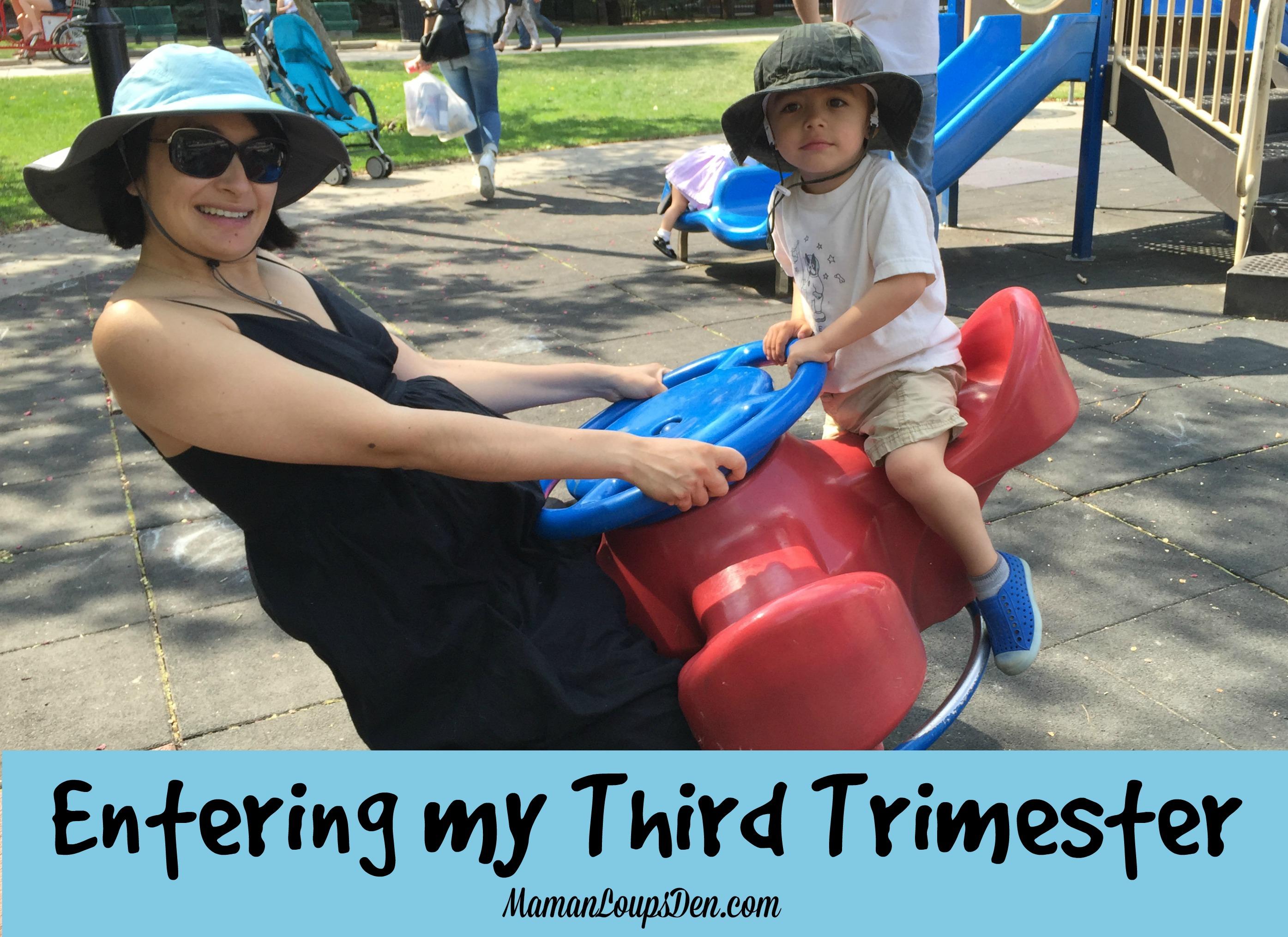 Third Trimester Pregnancy Journal