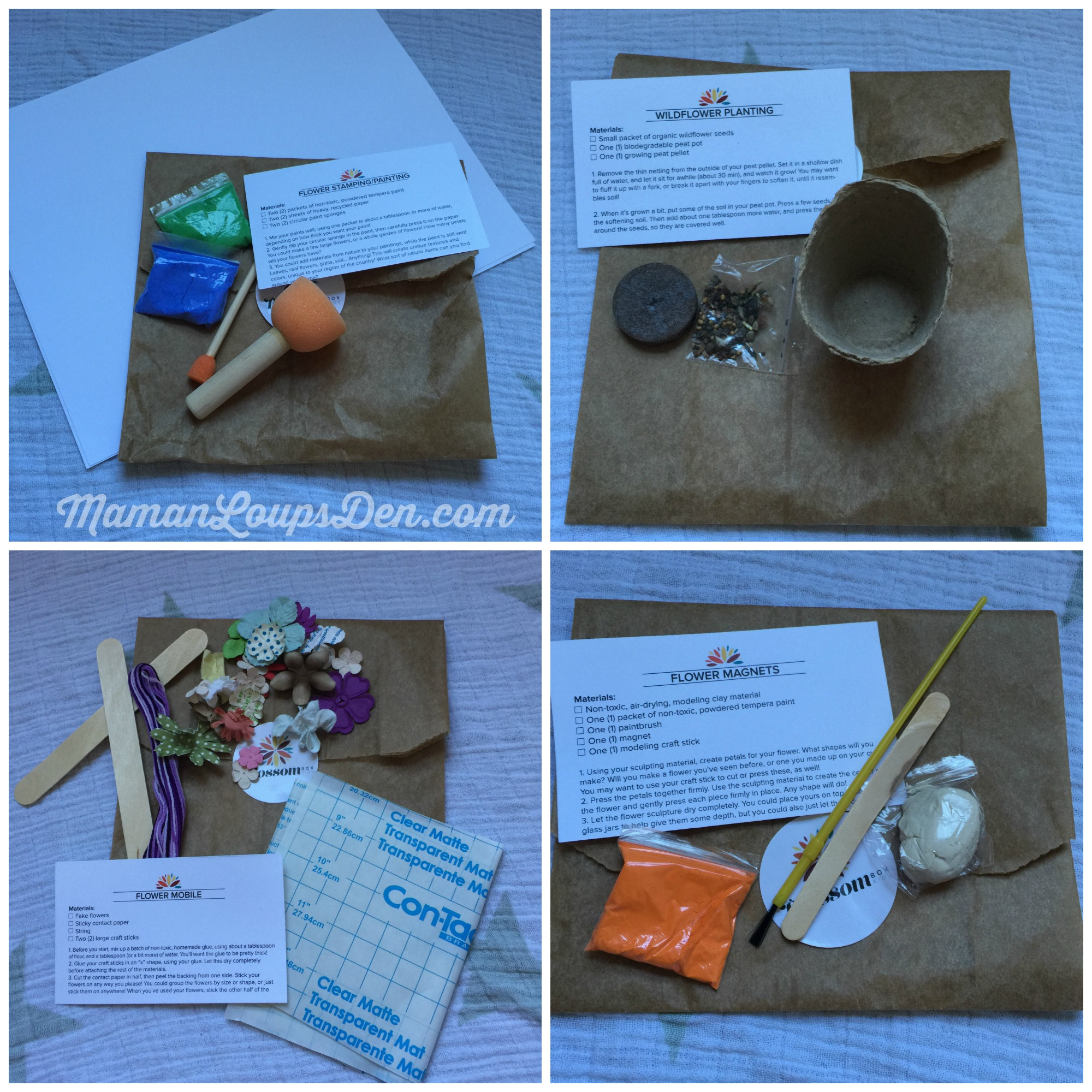 Blossom Box Kids Review by Maman Loup's Den Four Kits