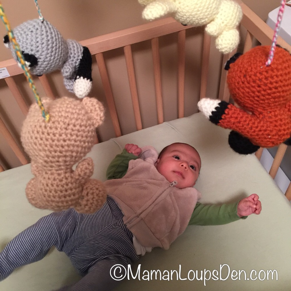 Crocheting by Sarah Mobile Review ~ Maman Loup's Den