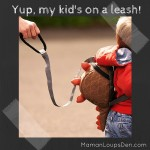Yup, My Kid's on a Leash! ~ LittleLife Toddler Daysack Review