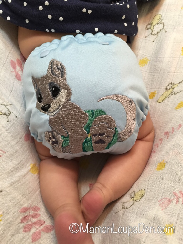 Brinkee Bum Custom Embroidered AIO Review | Maman Loup's Den