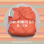 BumGenius 5.0 Pocket Diaper Review