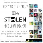 "Are Your Fluff Photos Being Stolen By ""Eco Cloth Diaper"" on Instagram?"