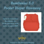 BumGenius 5.0 Giveaway {Canada Only}