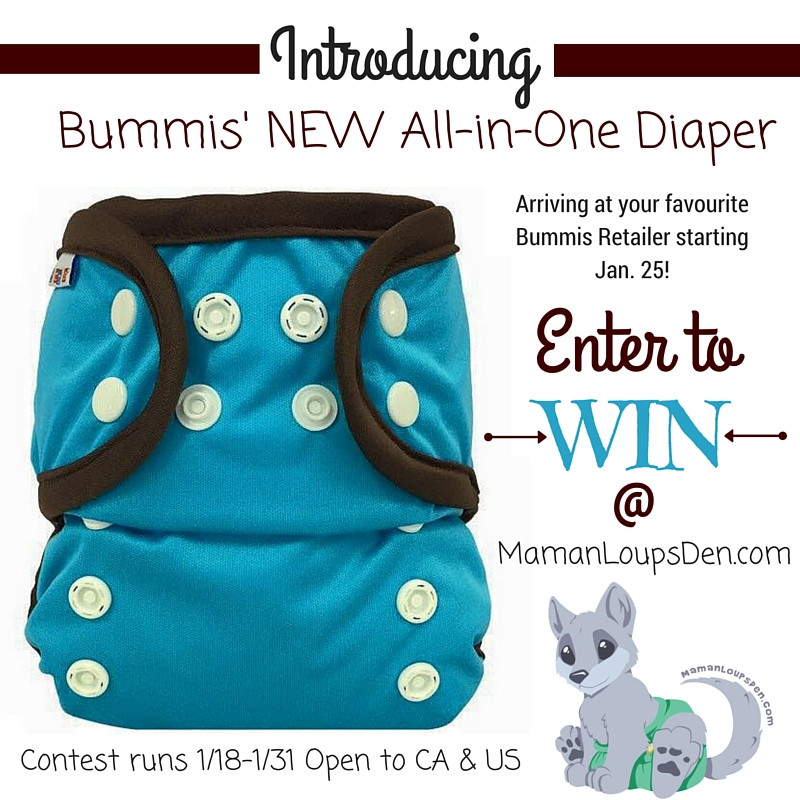 All-in-One Diaper Giveaway