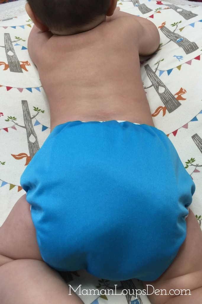Bummis New All-in-One Diaper ~ Maman Loup's Den ~ Back view
