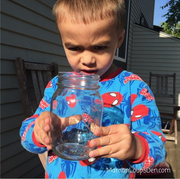 Cub and his bug jar
