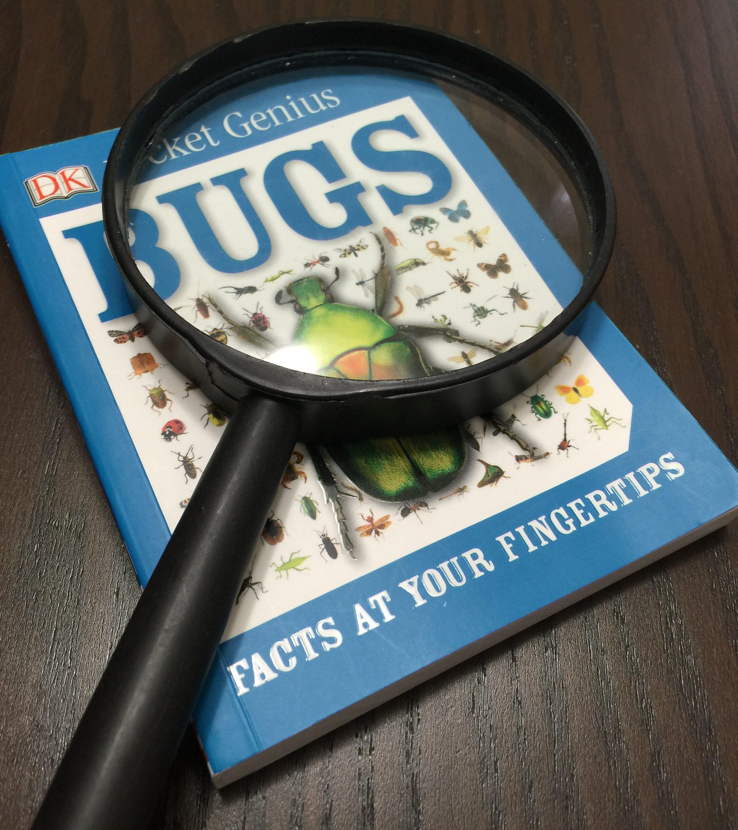Bug Pocket Guide