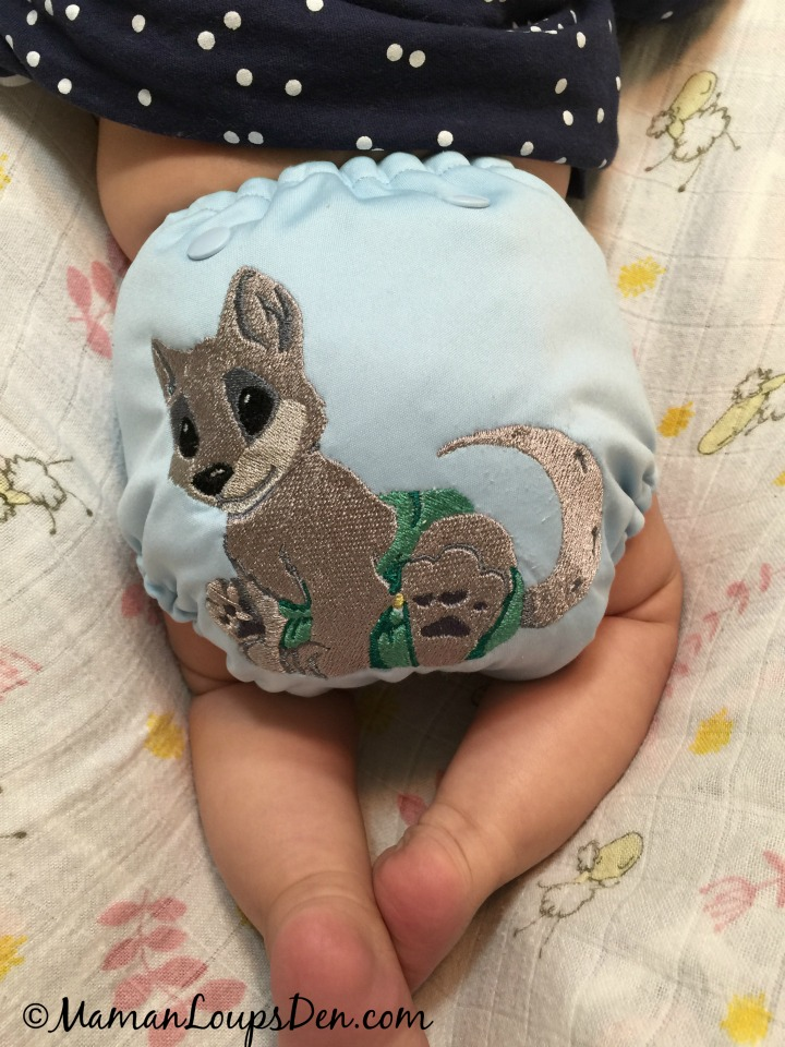 10 Fun Things To Do With Cloth Diapers - Customize them