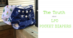 The Truth (is Out There) About LPO Pocket Diapers