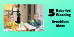 5 Baby-led Weaning Breakfast Ideas