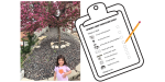 Printable Spring Tree Treasure Hunt & Learning Activities
