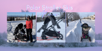Why You Need Polar Stroller Skis for Winter
